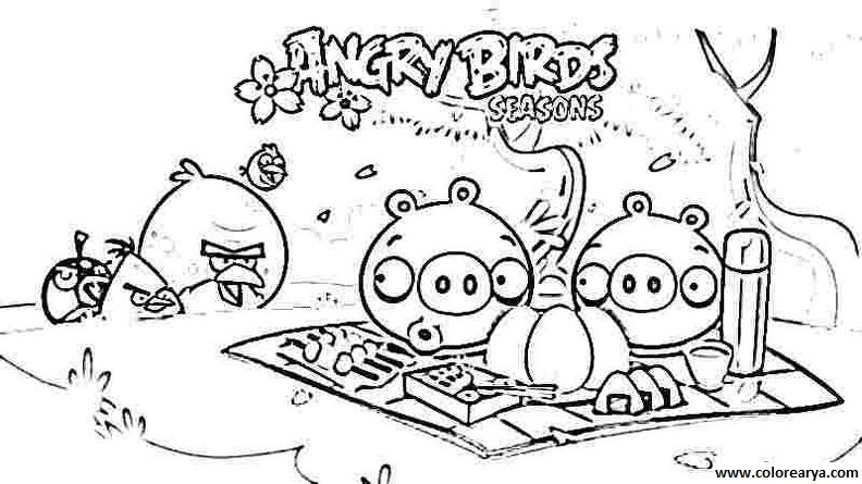 Dibujos Angry Birds colorear - Imagui