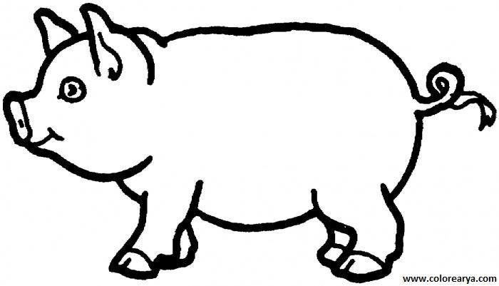 Dibujo de cerdo para pintar - Imagui