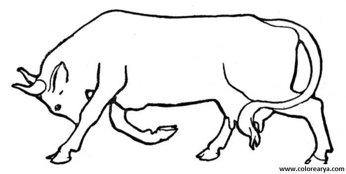 Dibujos para colorear toro y torero - Imagui