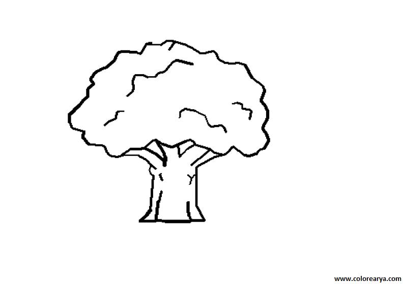 Dibujos De Arboles Coloreados: Dibujos De Arboles. Great Dibujos De Arboles. Perfect