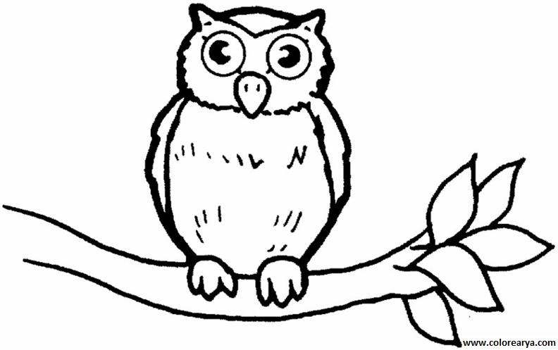 24 Animales Para Colorear Para Niños: Dibujos Para Colorear Y Pintar Para Los Niños