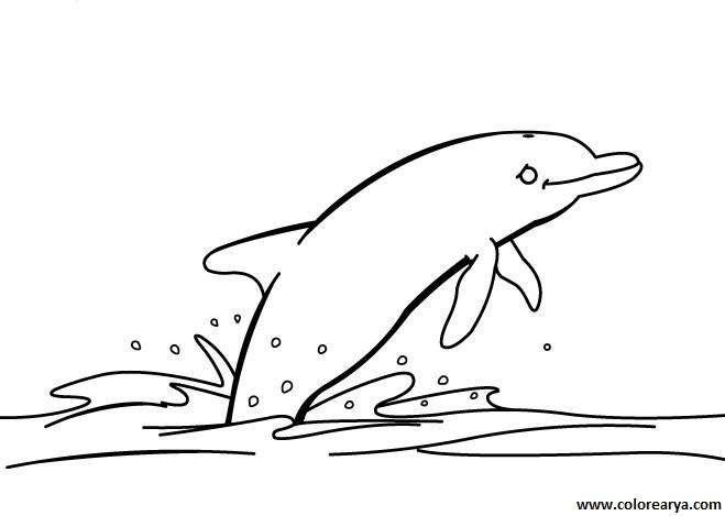 Dibujos Para Colorear Las Amigas Con El Delfin: Dibujo De Delfin Para Colorear. Beautiful Dibujos Para